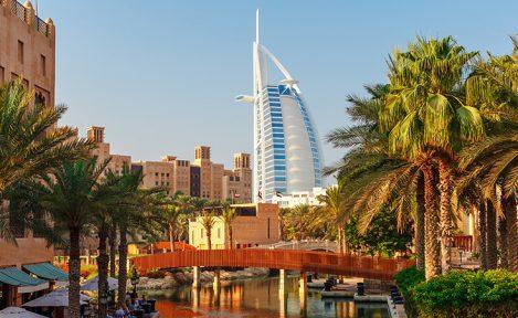 Wizyta reprezentacji ze Zjednoczonych Emiratów Arabskich ZDV